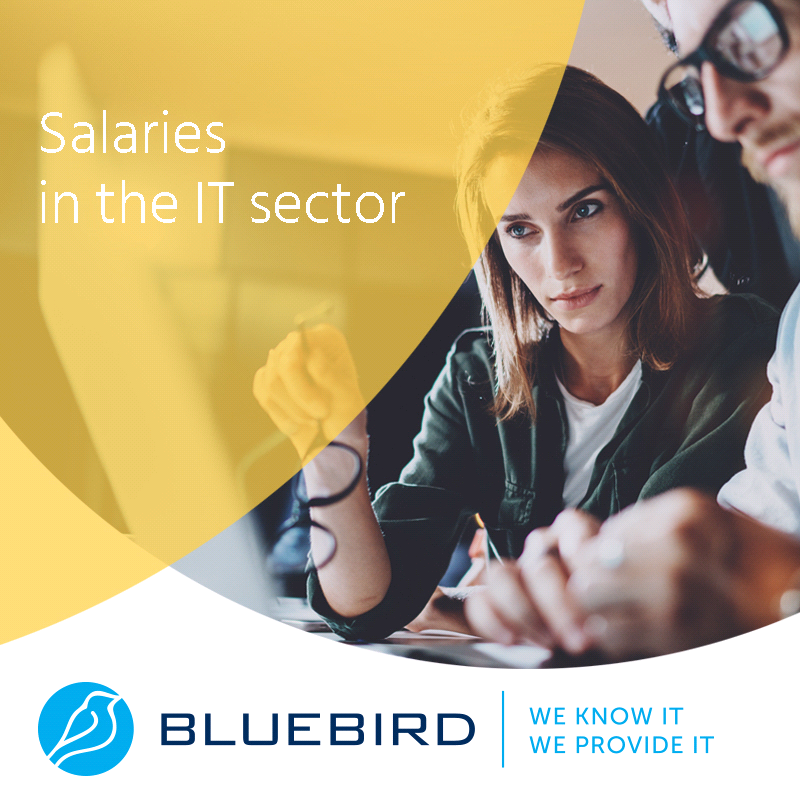 Salaries in the IT sector - Bluebird blog